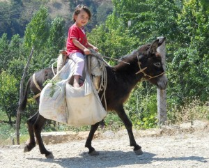 girl-on-a-donkey-at-vakif